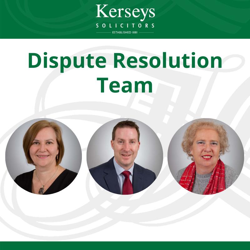 Dispute Resolution Team