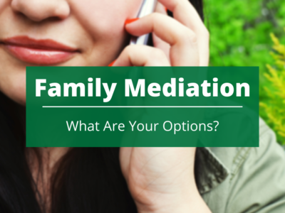 Family Mediation – What Are Your Options